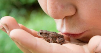 In Real Estate, You May Have to Kiss A Few Frogs... Here's Why