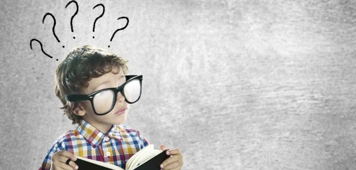 7 Questions Every Entrepreneur Should Ask Daily for a Better Business